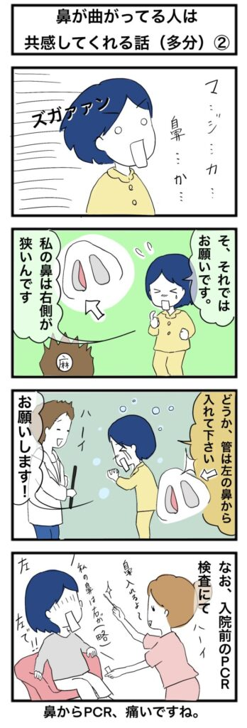 【親知らず抜歯】全身麻酔をする上で一番気になっていた事:4コマ漫画(2)