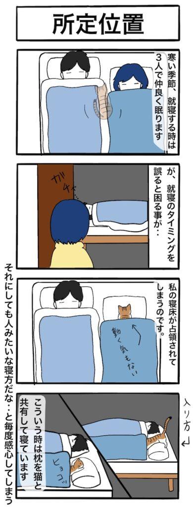 うちの猫の所定位置:4コマ漫画