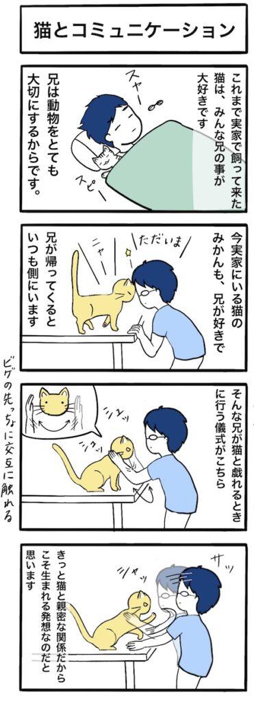 猫と兄のコミュニケーション:4コマ漫画